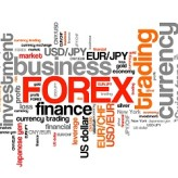 Forex Novice Shyness